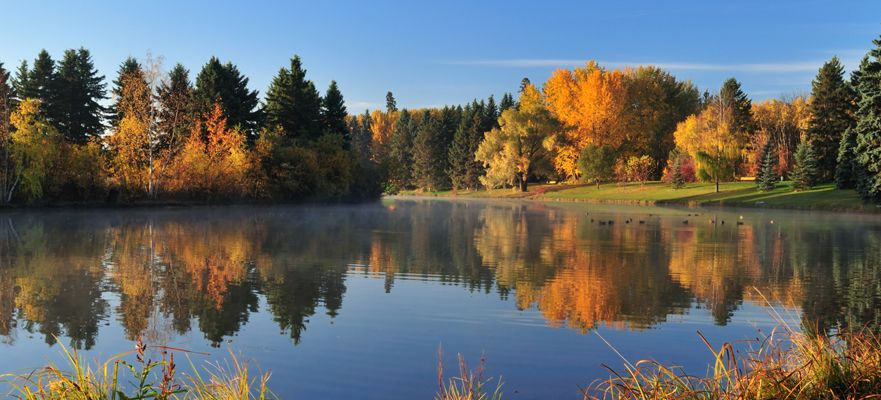 Prepare your North Edmonton Real Estate for Sale this fall